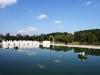 belvedere-nunta-la-piscina-11